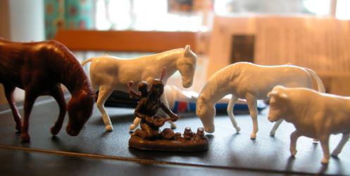 les-chevaux-et-l-indienne.jpg