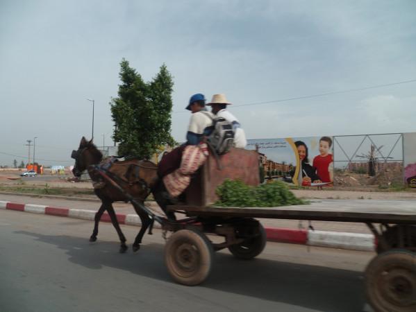 03-rue-marrakech.jpg