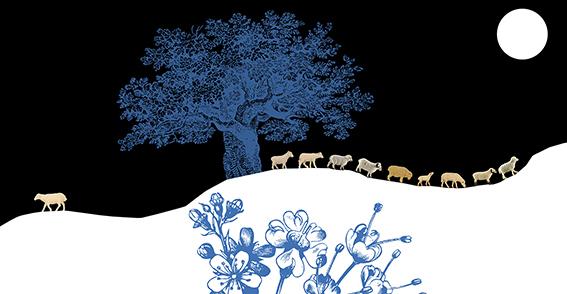 moutons maria jalibert